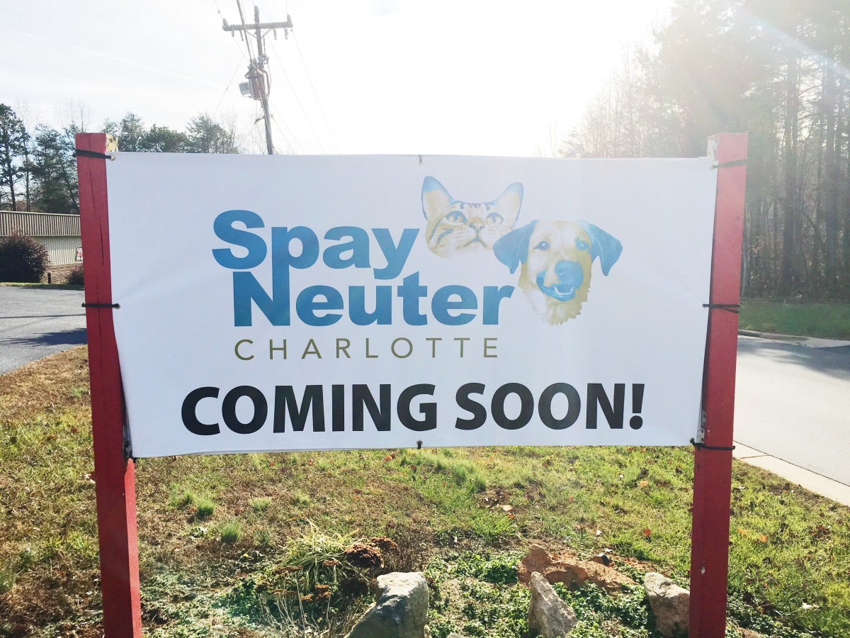 Coming Soon – Spay Neuter Charlotte Lake Norman!